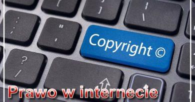 Prawo w internecie